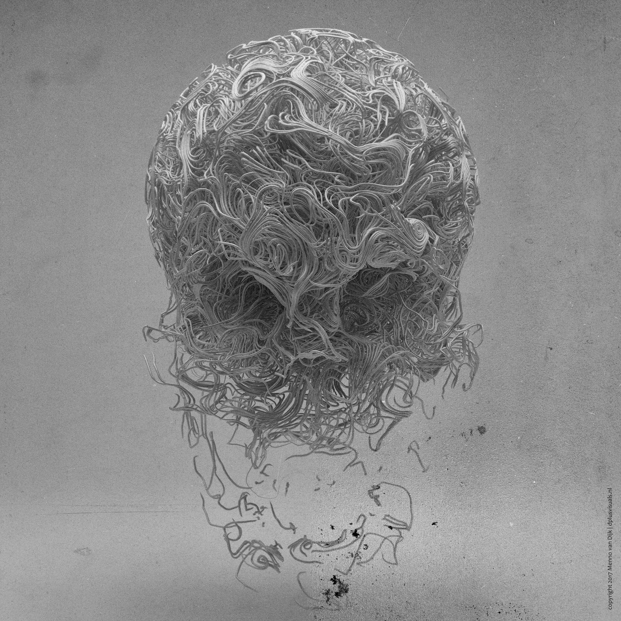skull_wire_web